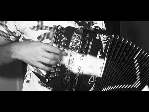 DESPACITO (Luis Fonsi ft. Daddy Yankee) COVER ORGANETTO