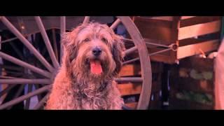 Annie (1982) - Trailer