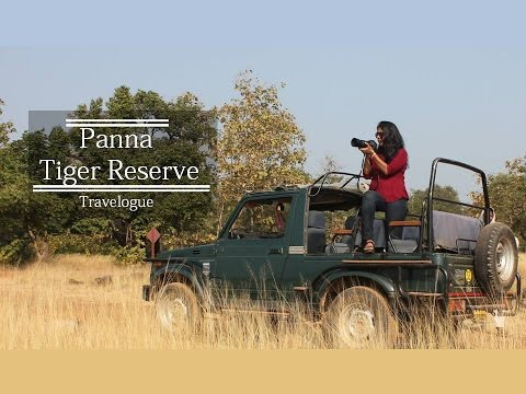 Panna Tiger Reserve | Forest Safari, Pandav Falls and Ranhe Falls in Madhya Pradesh |