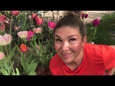 Täckodling och utplantering i Hemma hos Jessica v 22