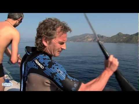 Expédition tortue marine Grèce PART 1