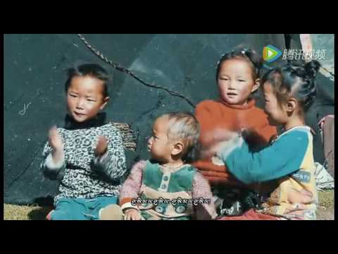 【Voice from Tibetan Plateau】Tssering lasoo