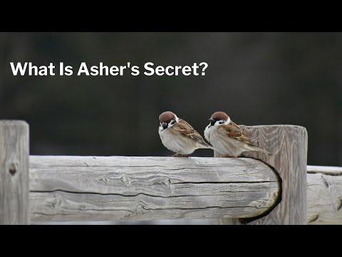 What Is Asher's Secret?