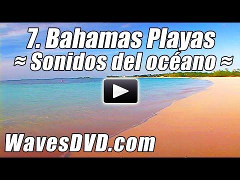 7. Mejor BAHAMAS PLAYAS olas relajacion naturaleza videos DVD relajantes sonidos deloceano relajarse