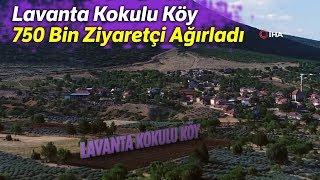 Lavanta Kokulu Köy 750 Bin Ziyaretçi Ağırladı