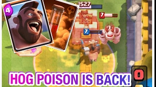NEW UPDATE! Hog Poison domination on Grand Challenge, 12 WINS! | Clash Royale