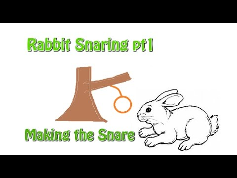 Rabbit Snaring pt 1- Making the Snare - YouTube
