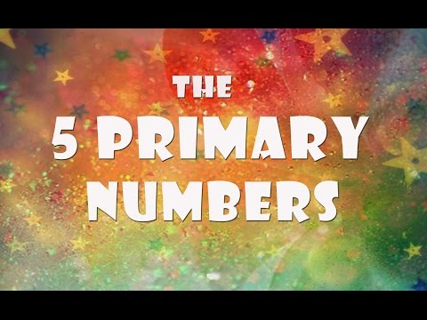 THE 5 PRIMARY NUMBERS