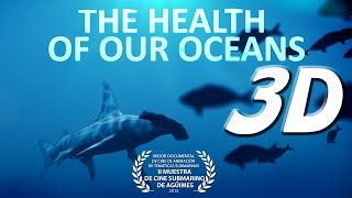 The Health Of Our Oceans 3D Stereoscopic