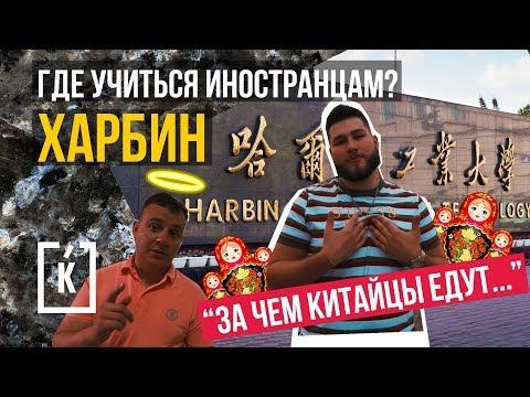 Где учиться иностранцам?   История Харбина   Почему китайцы едут в Харбин   #КИТАЙЧЕК