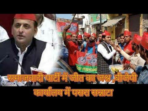 उप चुनाव उत्तर प्रदेश समाजवादी पार्टी में जीत का जश्न ,बीजेपी कार्यालय में पसरा सन्नाटा
