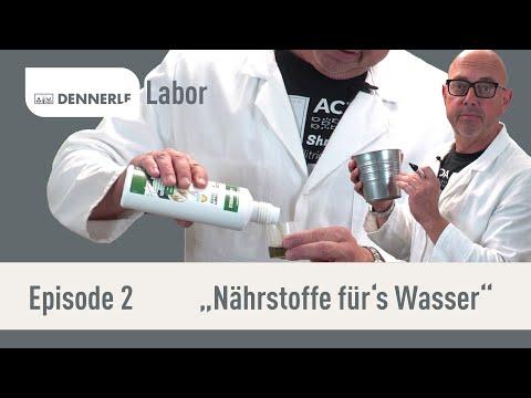 Nährstoffe im Wasser? Die richtige Düngung | DENNERLE Labor | Episode 2