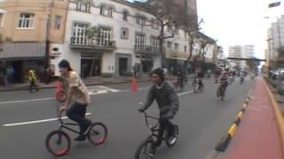 PRIMATE BMX   GO BMX DAY 2014