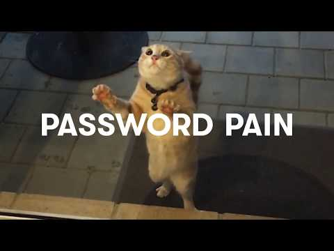 Password Pain