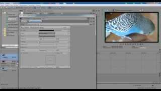 Как делать рамку к видео в программе Sony Vegas Pro 12. 0.  Izuchenie program.(Буду рада если мое видео вам будет полезным, задавайте вопросы, обязательно отвечу, подписывайтесь буду..., 2014-02-17T19:10:42.000Z)