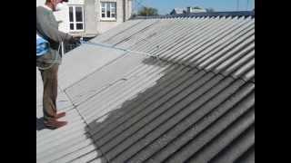 Защита крыши от мха. Нанесение антисептика для шифера. 2012 г. - SHIFER.by