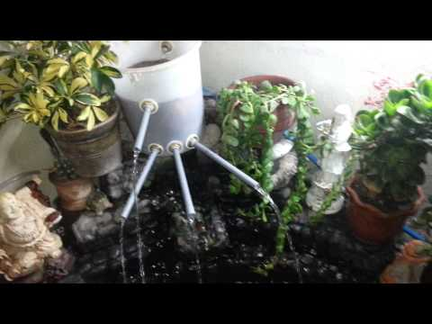 Como mantener limpia el agua de su estanque doovi for Estanque para carpas
