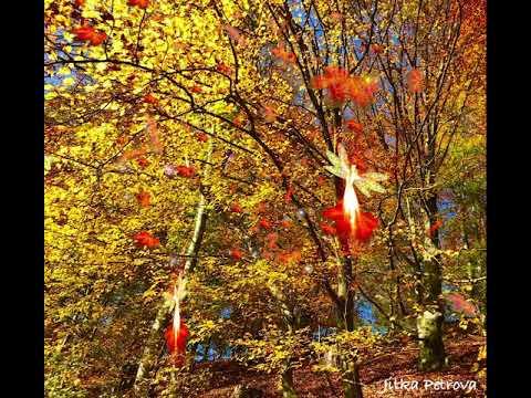 Herbstfreuden - Autumn Joy