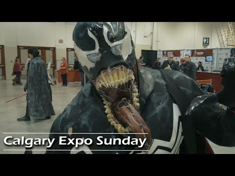Calgary Comic and Entertainment Expo Sunday 2018 | Journey A
