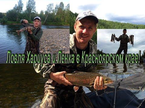 красноярск рыбалка на хариуса
