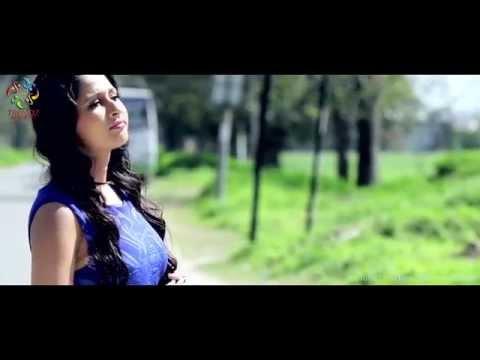 Businessman | Davinder Gill | New Punjabi Songs 2016 | Latest Punjabi Songs 2016 | Trendz Music