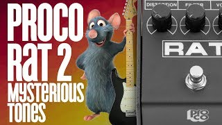 How To Get CRAZY Distortion With The ProCo Rat 2
