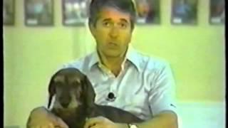 Видео урок по хендлингу - показ собак на выставках.(Демонстрируя свою собаку, ощущайте себя художником, который выставляет для оценки общественности свое..., 2013-06-10T18:44:12.000Z)