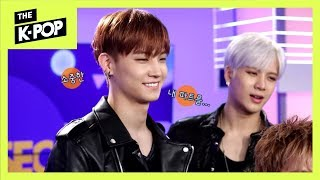 Download lagu [5sec INTERVIEW] GOT7, The curse of chicken doesn't beat GOT7!!