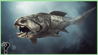 What If The Dunkleosteus Didn't Go Extinct?