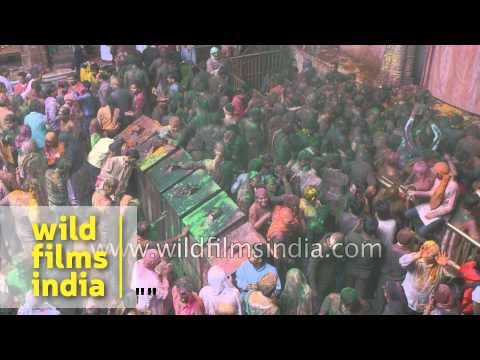 The madness of Holi at Banke Bihari Temple, Vrindavan