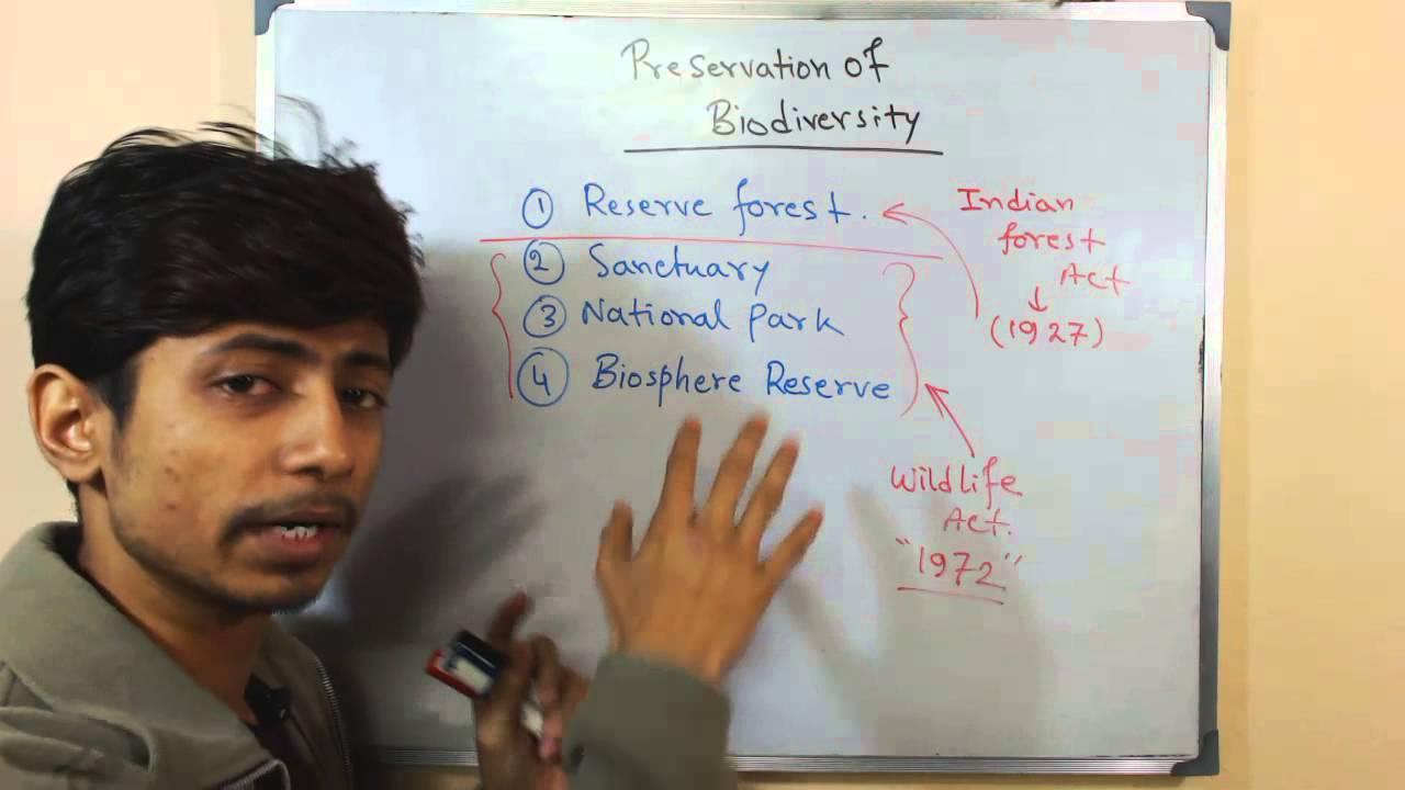 Biodiversity Conservation Youtube