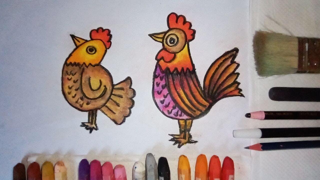 cara menggambar dan mewarnai ayam jantan dan ayam betina
