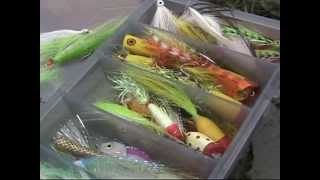 FLY STORM - Fly fishing in the Mediterranean Sea - By Videospin - Reality Fishing - DVD full - 2006