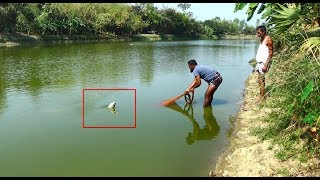 Net Fishing | Catching Lot Of Big Fish With Cast Net | Net Fishing in the village (Part-264)