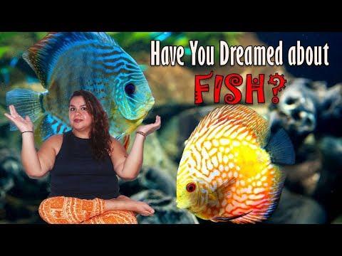 Top Dream Interpretation Of Fish - What Does Fish Dreams Mean