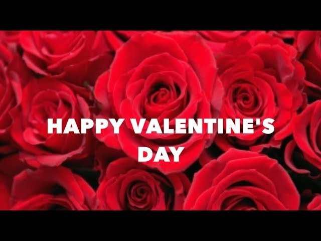 Happy Valentine's Day | WhatsApp Status | Valentine's Day Special Love Status | Wishes | Images #1