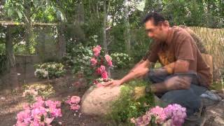 Decorative Stone Garden Ideas
