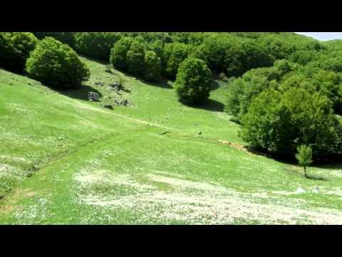 Monte dei Cervi (1656 m) nel Parco Regionale delle Madonie