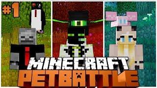 EIN NEUES BATTLEPROJEKT?! - Minecraft PETBATTLE #1 [Deutsch/HD]