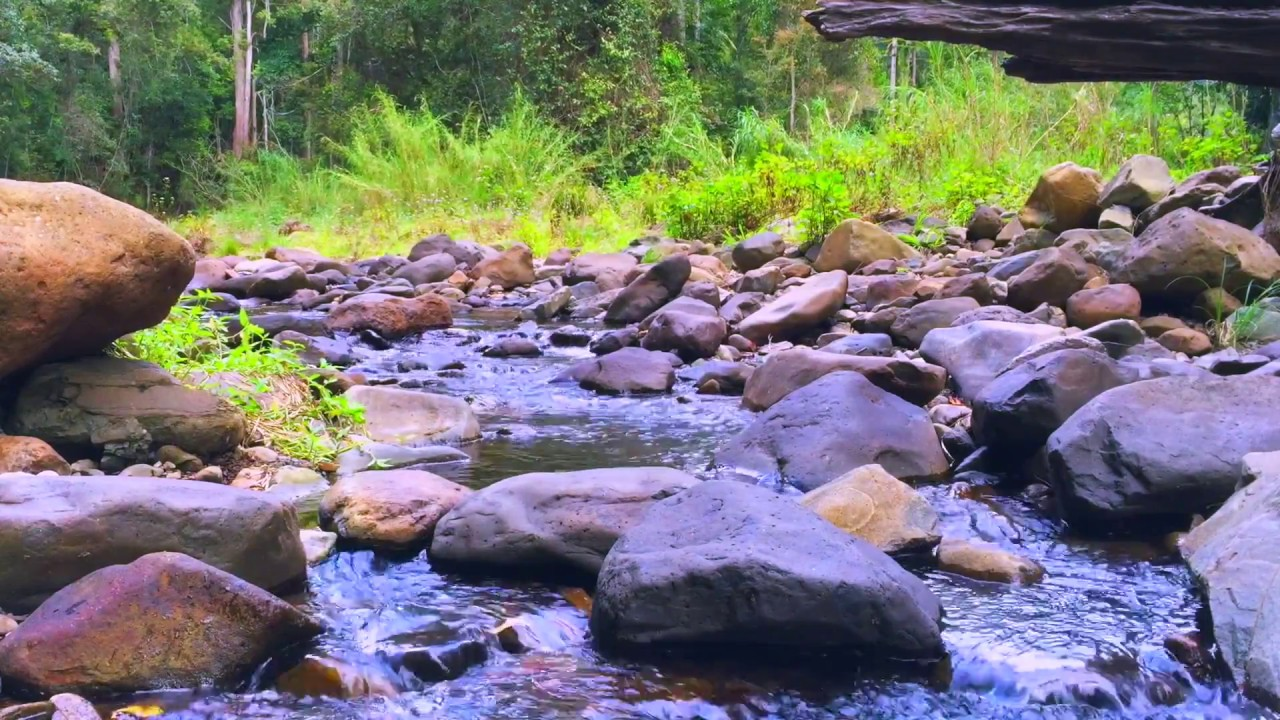 Download Gentle Stream Sounds   Relaxing Stream Sounds use for Relaxation, Sleep, insomnia