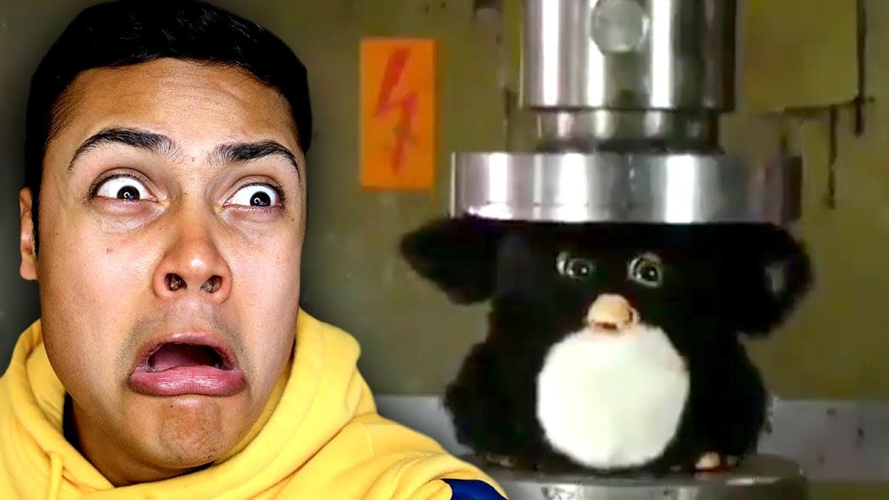Dont Put Furby In A Hydraulic Press Reacting To Memes Youtube