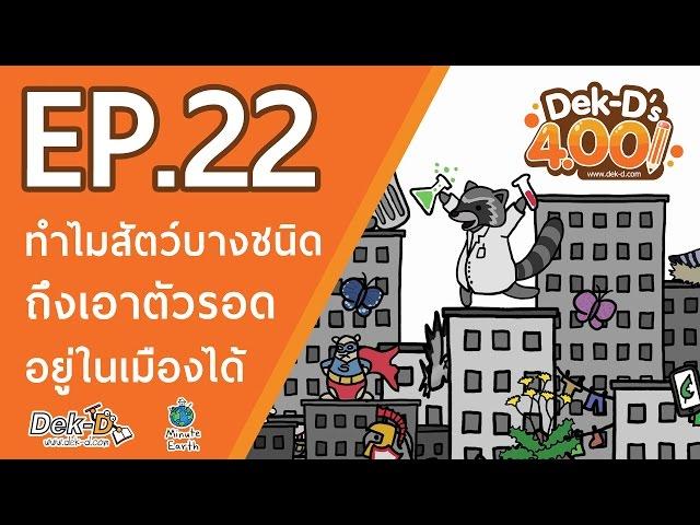 [DEK-D 4.00:EP.22] ไขปริศนา! ทำไมสัตว์บางชนิดถึงเอาตัวรอดอยู่ในเมืองได้