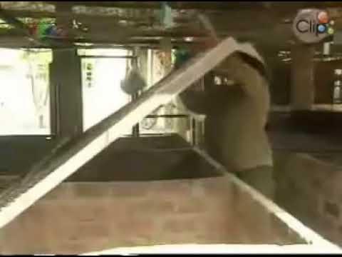 ki thuat nuoi nhim 1 ,kỹ thuật nuôi nhím xem thêm nuôi Dế tại www.oas.vn