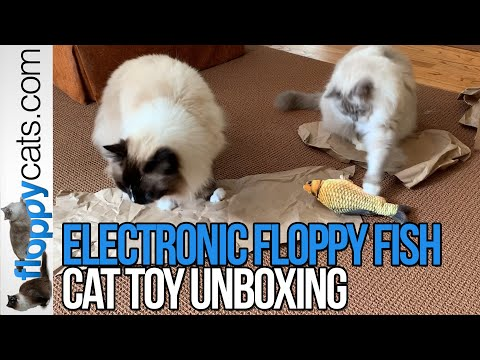 Floppy Fish Electronic Cat Toy Unboxing