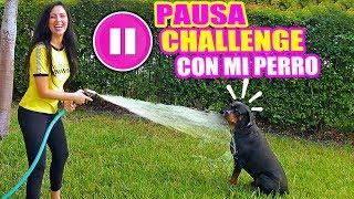 PAUSE CHALLENGE CON MI PERRO! 24 HORAS JUGANDO EL RETO DE LA PAUSA - SandraCiresArt Karim Rottweiler