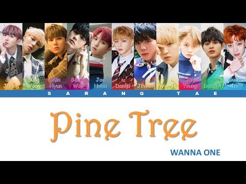 Free Download Wanna One (워너원) - 'pine Tree' Lyrics [color Coded_han_rom_eng] Mp3 dan Mp4