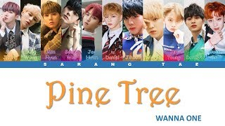 WANNA ONE (워너원) - 'Pine Tree' Lyrics [Color Coded_Han_Rom_Eng]