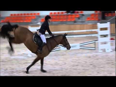 Weronika Wilska i Lady von Bayern klasa CC
