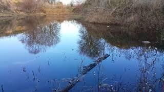 Çok sessiz sakin bir göl...!