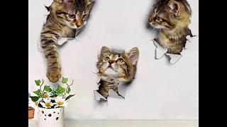 3D Cute Cat Stickers
